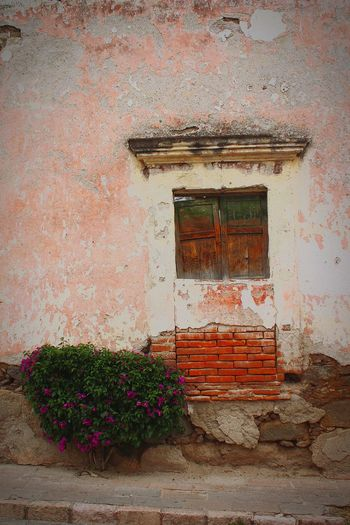 Tequisquiapan Queretaro,Mexico Window Vintage Colonial Architecture Wood