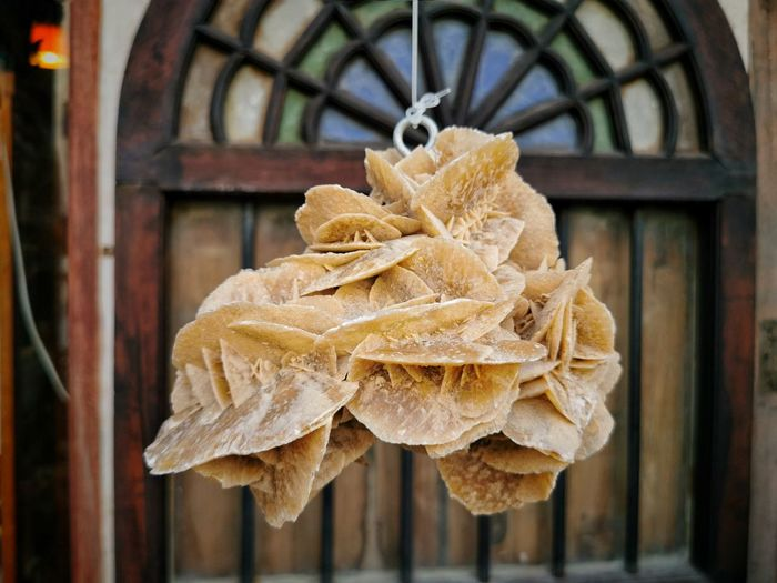 Close-up of dry leaf hanging on wood