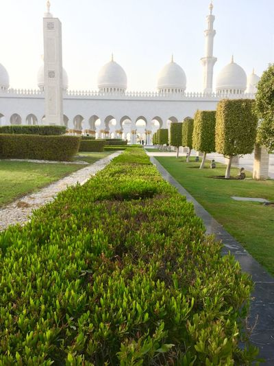 Ornamental Garden At Sheikh Zayed Mosque