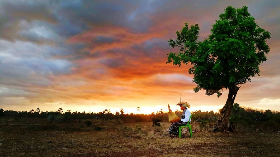 Tree Agriculture Cloud - Sky People Sunset Sky One Person Outdoors Nature Beauty In Nature Real People Adults Only One Man Only EyeEmNewHere Nature Landscape Traditional Musical Instrument Music Musician Rote Island Sasando Nusa Tenggara Timur INDONESIA Indonesia_photography