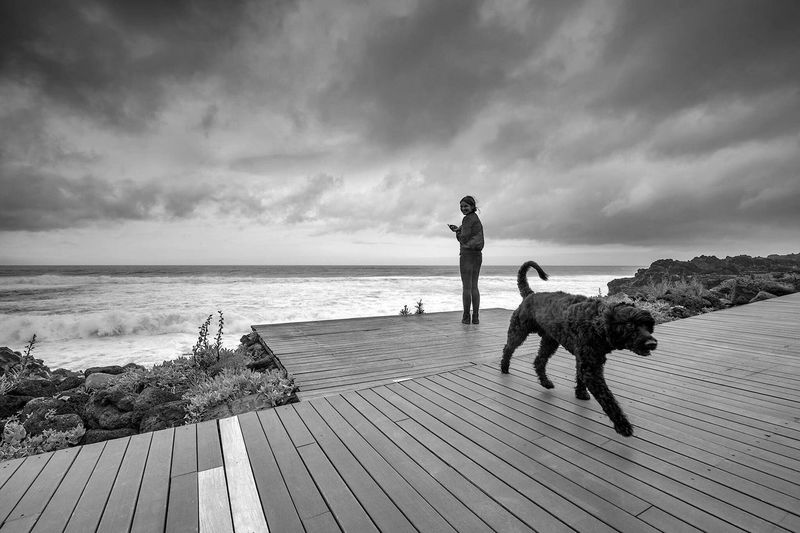 Man with dog standing on beach against sky