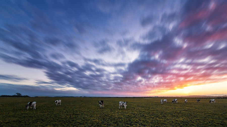 Scenic view of dramatic sky over agricultural landscape