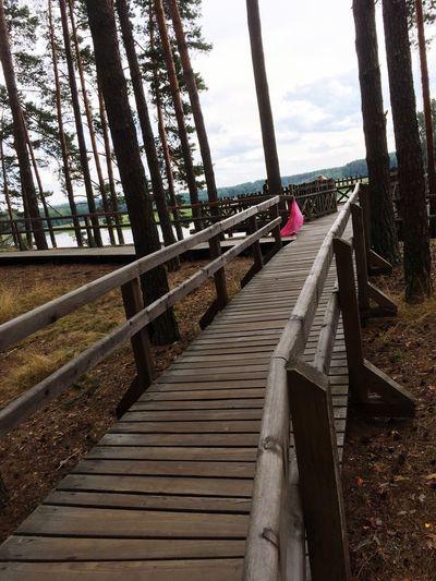 Stawy Echo Zwierzyniec Poland EyeEm Poland Relaxing Walking Around