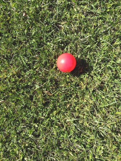 Grass Green Color Ball Red Outdoors No People Nature Red Ball Ball On Grass Red And Green Green And Red