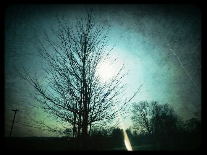 The Sun's light pierces through a dark day. Light Sky Trees Countryside Check This Out Spirit Of The Tree Sun