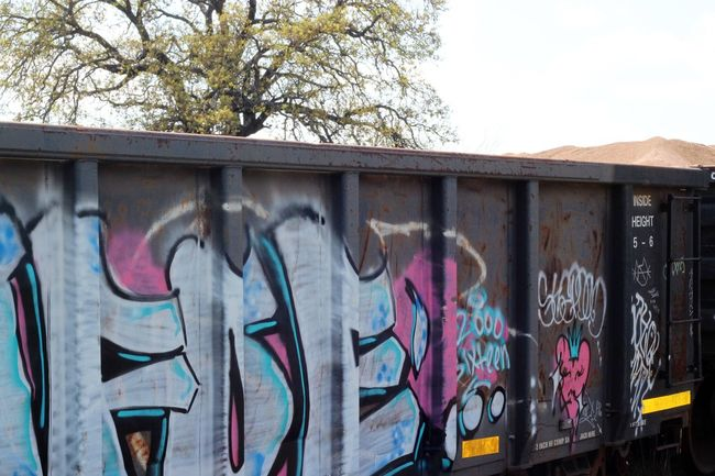 Graffiti Train Photography No People Train Train Graffiti  Graffitiporn Grass Train Track Outdoors