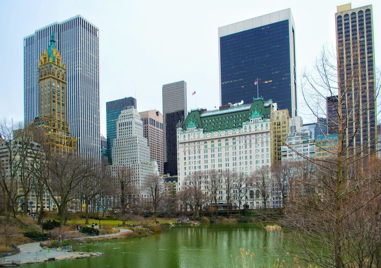 Skyscraper City Architecture Built Structure Cityscape Hotel Ritz Central Park Park USAtrip Central Park - NYC Cold Weather New York City New York Cold Day City Life Travel Photography Building Exterior Travel Destinations City Cityscape Lake View Finance Hotel View