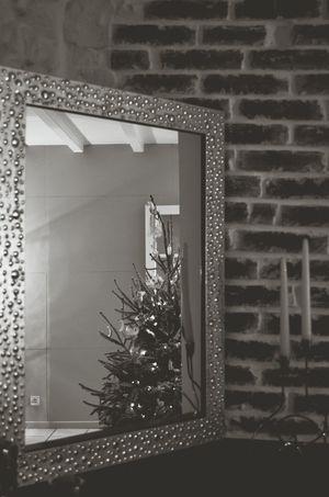 Blackandwhite Tree Christmas Tree Reflection Reflect Mirror Blackandwhite Photography