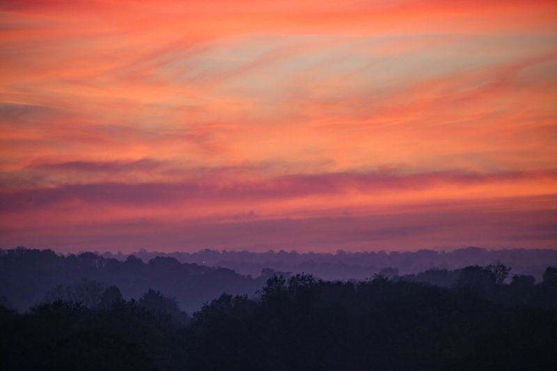Where fading lights still burn... Sky Cloud - Sky Beauty In Nature Sunset Scenics - Nature Tranquility Tree Environment Dramatic Sky Tranquil Scene Landscape Orange Color Multi Colored Silhouette Nature No People Idyllic Plant Forest Outdoors