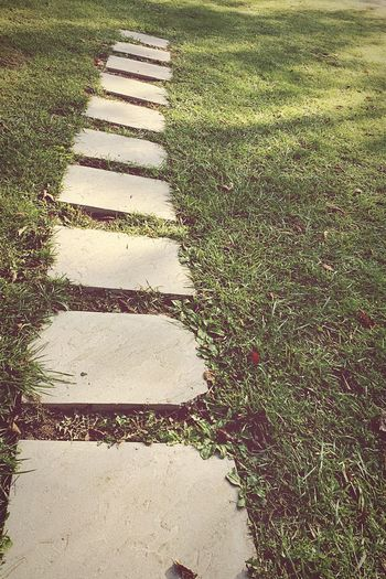 Pathway to success Pathway Grass High Angle View Stepping Stone Green Color Day Sunlight Nature Outdoors No People Growth Field Close-up Beauty In Nature