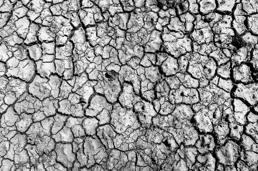 scorched earth Abstract Blackandwhite Dry Earth No People Outdoors Scorched Textured