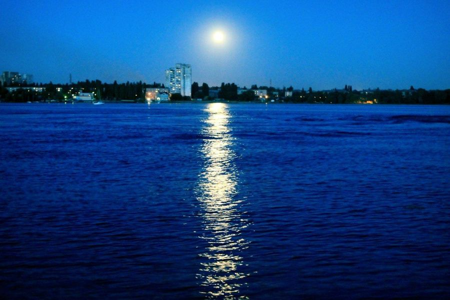 Night Moon Walk Landscape Nature