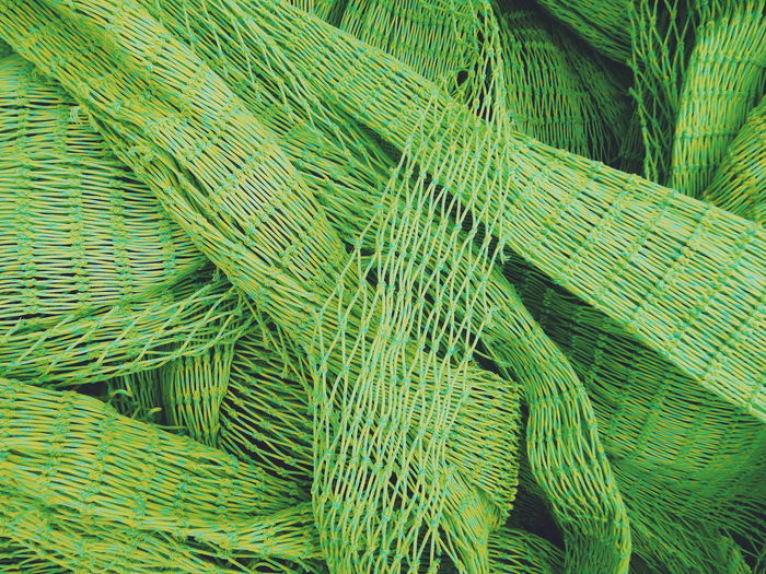 Backgrounds Beauty In Nature Close-up Day Detail Fern Full Frame Green Green Color Growth High Angle View Natural Pattern Nature No People Outdoors Pattern Textured  Showcase March Colors Pastel Colors Textures And Surfaces Background Texture Fishing Nets Net