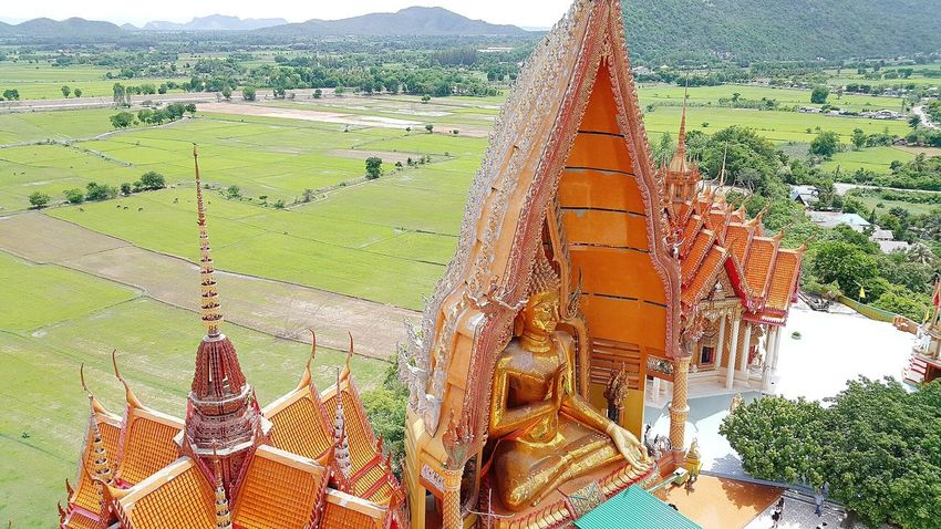 Buddha Image Buddhist Temple Buddha Fields Temple In Thailand Temple View