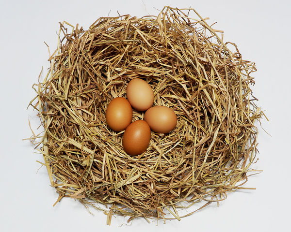 Abundance Agriculture Animal Egg Basket Brown Close-up Egg Food Group Of Objects Hay Healthy Eating Heap Large Group Of Objects Nature No People Organic Raw Food Ripe Rural Scene Still Life Studio Shot