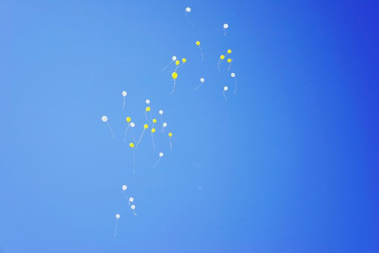 Always remember Skyballoons Balloon On Sky Wait Balloons Wait Yellow Balloons Yellow Color Blue Balloon Mid-air Motion No People Flying Sky Celebration Multi Colored Blue Background Event Large Group Of Objects Nature Party - Social Event White Color Decoration