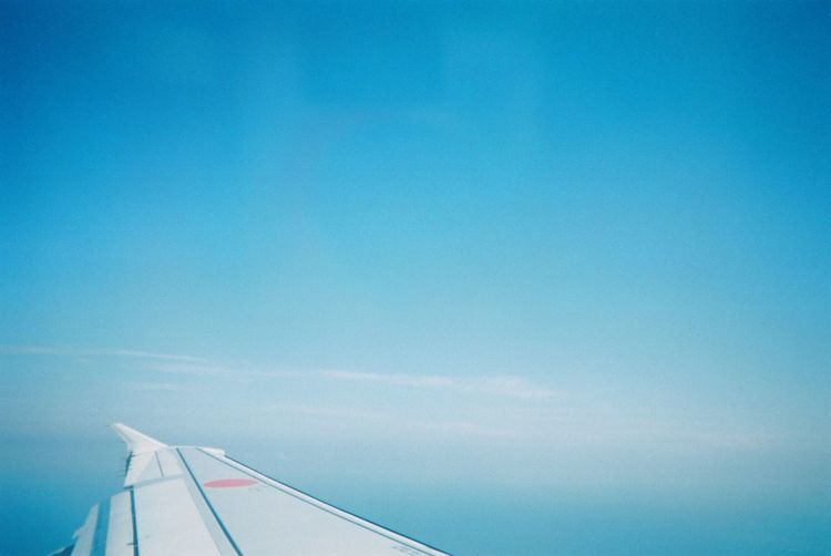 OpenEdit Blue Airplane Transportation Sky No People Air Vehicle Day Mode Of Transport Cloud - Sky Nature Flying Outdoors Airplane Wing Beauty In Nature Close-up Film Tokyo,Japan Lifestyles EyeEm Best Shots Transportation