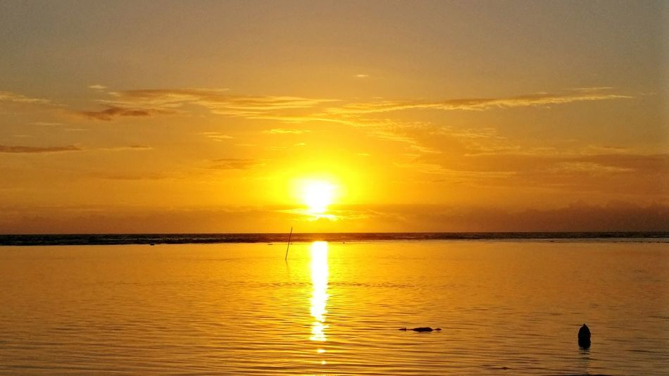 Sunset Tranquility Beauty In Nature Water Sea Sun Outdoors No People Sky Beach Reunion Island La Réunion  Nature