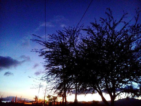 one of His beautiful creation. ☝😄😍 EyeEmNewHere EyeEm Nature Lover Philippines Bird Sunset Silhouette Astronomy Dusk Blue Sky Animal Themes Cloud - Sky