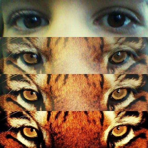 my tiger eyes♡
