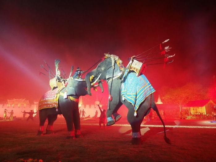 Men riding elephants during war at night