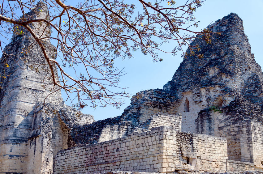 Xpujil high part of the main temple near Campeche, Mexico Ancient Archeology Campeche City Mayan Mayan Ruins Mexico Pyramid Pyramids Ruins Travel Yúcatan Acropolis Archaeological Archaeological Sites Civilization Landmark Maya Monument Rivera Sacred Site Temple Xpujil Yucatan Mexico
