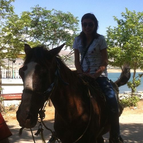 Horse Riding Yesterday Had  Fun Last Day Prom 14 Together Brown Horse