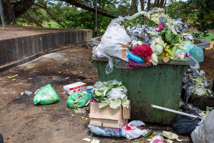 Garbage bin by plants in basket