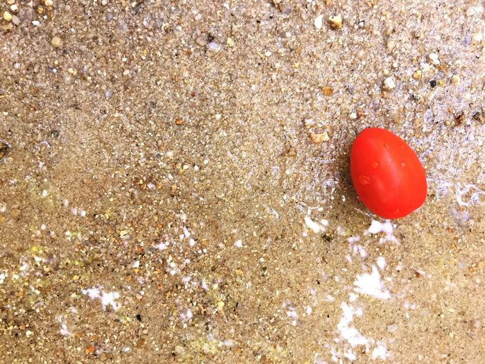 I am alone River Sand Red High Angle View Balloon Land Sand No People Day Fruit Healthy Eating Outdoors Ball Still Life Tomato Food And Drink Freshness Vegetable Sunlight Nature Beach Food