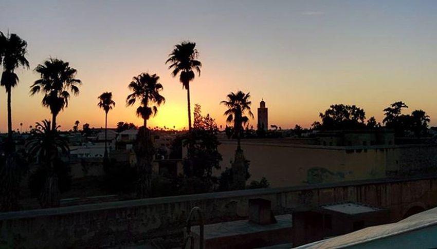 Zwinzwincafe Morroco Marrakech Marrocco Sunset