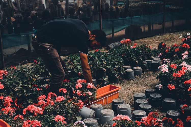 Beauty In Nature Cactus Choice Day Florist Flower Flower Shop Freshness Full Length Garden Growth Lifestyles Men Nature Occupation One Person Outdoors Plant Plant Nursery Real People Retail  Spring Standing Working Young Adult