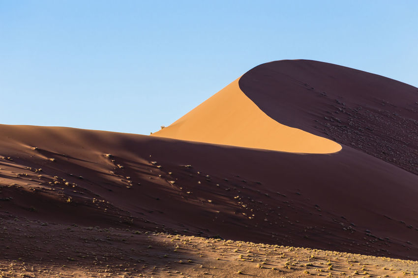 Dunes of Sossusvlei, Namibia, Africa Namib Desert Namib Dunes Namibia Arid Climate Beauty In Nature Blue Clear Sky Day Desert Extreme Terrain Geology Landscape Nature No People Non-urban Scene Outdoors Sand Sand Dune Scenics Sky Sunlight Tranquil Scene Tranquility Travel Destinations