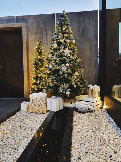 Christmas tree on table against building