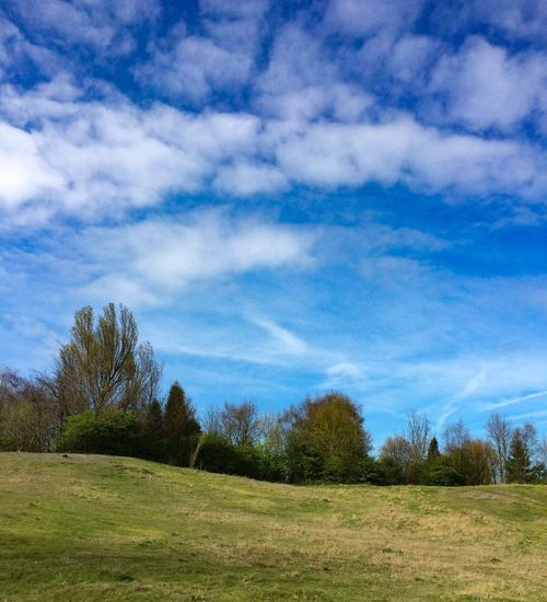 Good Morning Sky And Clouds Cloud - Sky Sky Nature Grass Beauty In Nature Blue Landscape