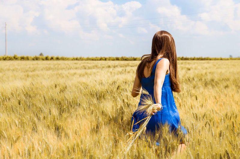Rear View Of Woman Walking On Wheat Field
