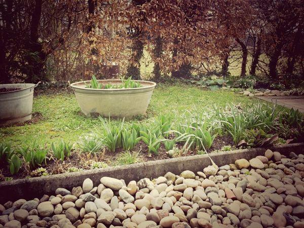 Frühling Zum Hieressen :*