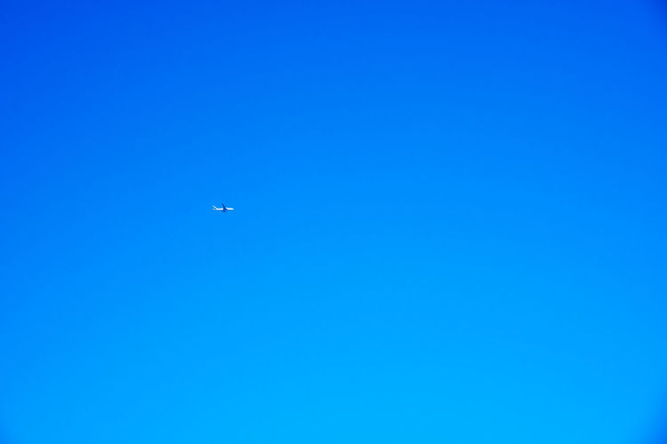 Japan Air Vehicle Airplane Airplane Wing Beauty In Nature Blue Clear Sky Copy Space Day Flying Journey Low Angle View Mid-air Nature No People Outdoors Sky Transportation