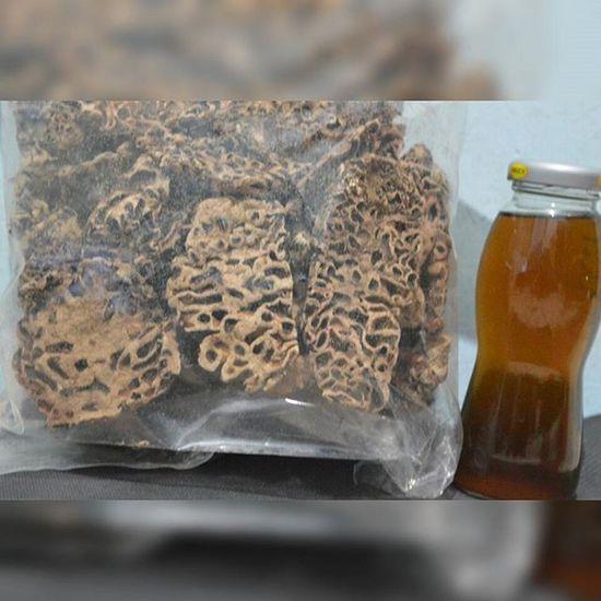 """""""Sarang semut merah papua"""", dapat kiriman herbal lagi dari papua, khasiatnya banyak...Obat Kesehatan Tradisional Herbal Herb Herbalife Papua"""