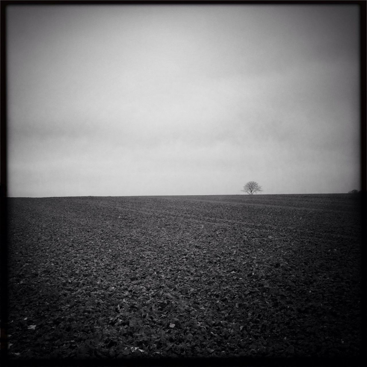 Ploughed field against sky