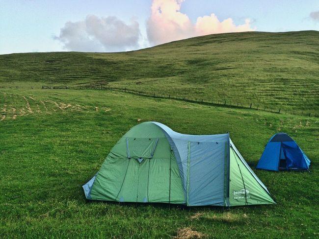 Camping at Bethells beach Newzealand