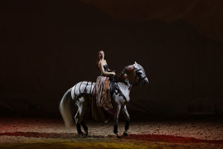 Horse Photography  Cavalia Circus Enjoying The View Stage Photography