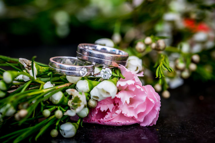 the diamond rings in the wedding ceremony Engagement Wedding Wedding Photography Close-up Day Diamond Engagement Ring Flower No People Ring Wedding Ring