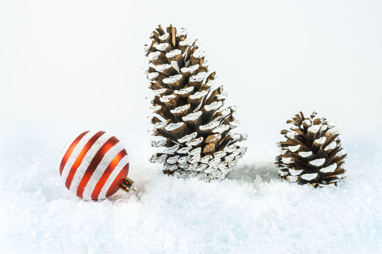 Christmas Beauty In Nature Christmas Background Christmas Ball Christmas Bauble Christmas Decoration Christmas Decorations Christmas Ornament Close-up Cold Temperature Day Fir Cones Food And Drink Freshness Nature No People Outdoors Season  Snow White Background Winter