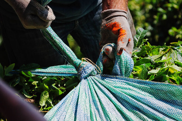 Midsection Of Worker Holding Sack During Sunny Day