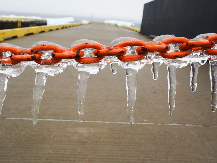 Close-up of frozen hanging over water