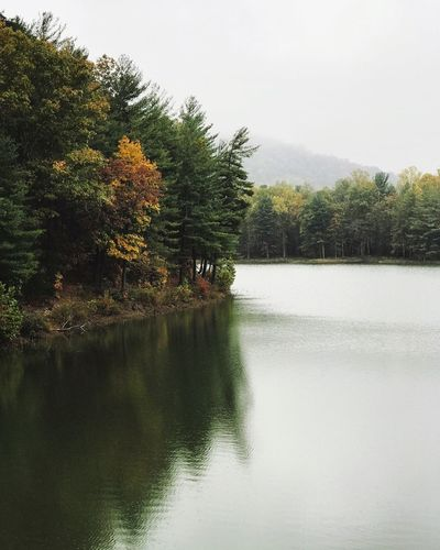 Tree Nature Tranquil Scene Lake Scenics Tranquility Reflection Beauty In Nature Water No People Autumn Day Sky Landscape Outdoors Growth Forest