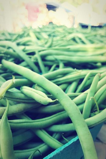 Miles of Green Beans! Beans Green Color Close-up No People Indoors  Growth Cable Plant Day Selective Focus Freshness Still Life Full Frame Tangled Beauty In Nature Backgrounds Complexity Nature Abundance Green Color Close-up No People Indoors  Growth Cable Plant Day Selective Focus Freshness Still Life Full Frame Tangled Beauty In Nature Backgrounds Complexity Nature Abundance