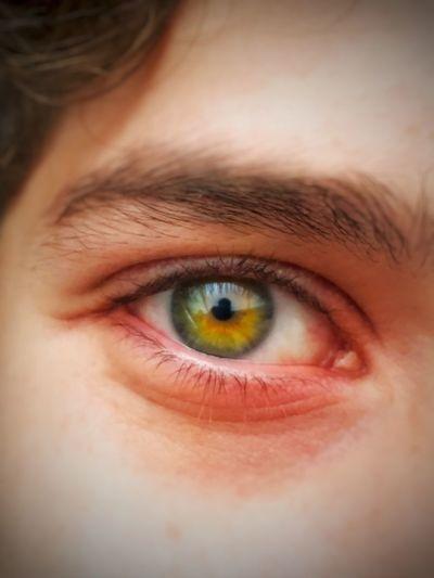 Human Eye Eyesight Looking At Camera Human Body Part Eyelash Eyeball Iris - Eye Portrait Eyebrow Sensory Perception Close-up One Person Eyelid Human Face Real People Indoors  Hazel Eyes  Day People