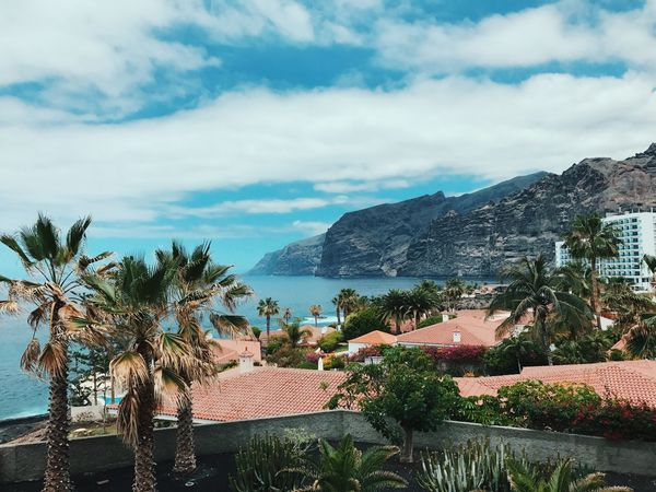 Tenerife Outdoors Summer Vacations Mountain Beauty In Nature Water Nature No People Sky Palm Tree Cloud - Sky
