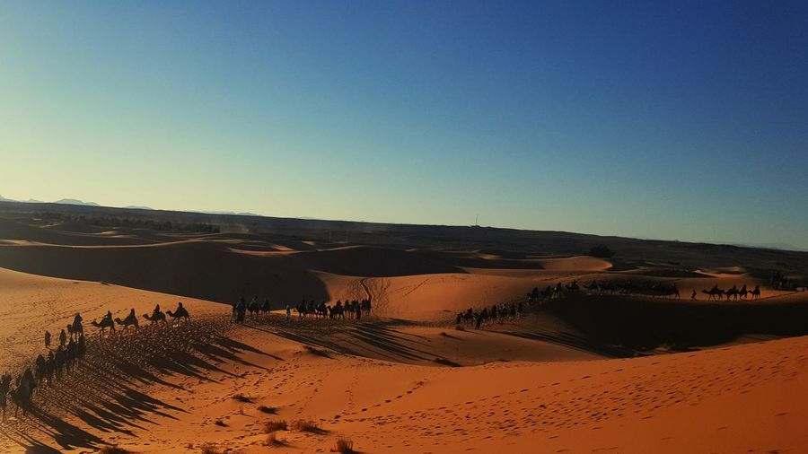 Caravan Sahara